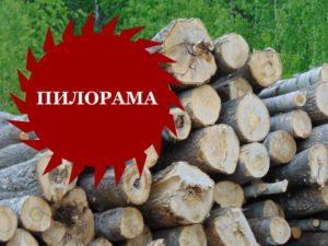 По мотивам АС. Пилорама